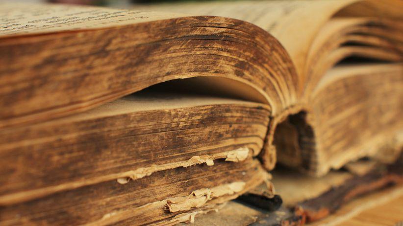 Ist urtext nächsten bibel welche dem am Welche Bibel